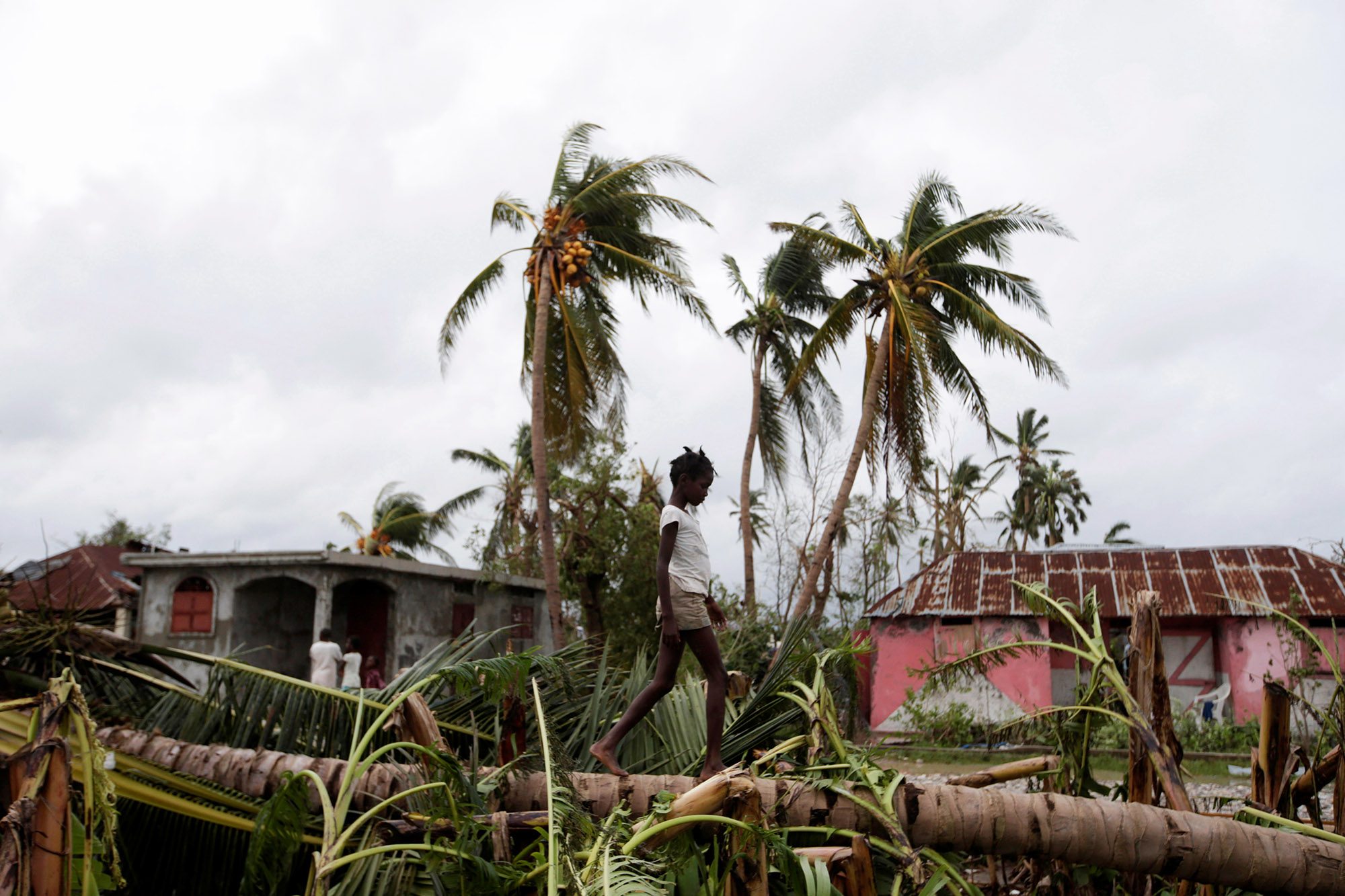 A girl walks on a tree damaged by Hurricane Matthew in Les Cayes, Haiti