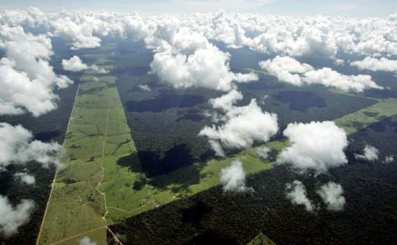Strips of deforested land in the Brazilian Amazon (Rickey Rogers / Courtesy Reuters).