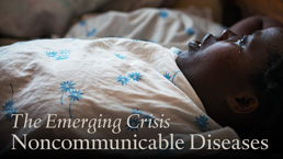 Noncommunicable Diseases Task Force Report