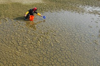 A woman scoops water from a dried up reservoir.